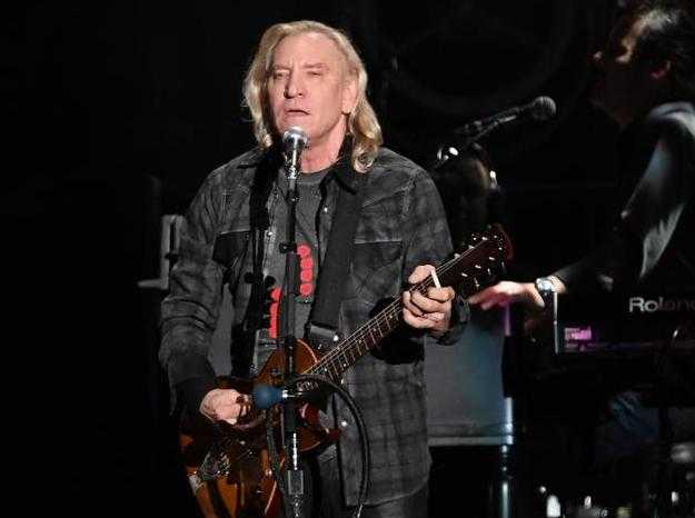 Joe Walsh Guitarist