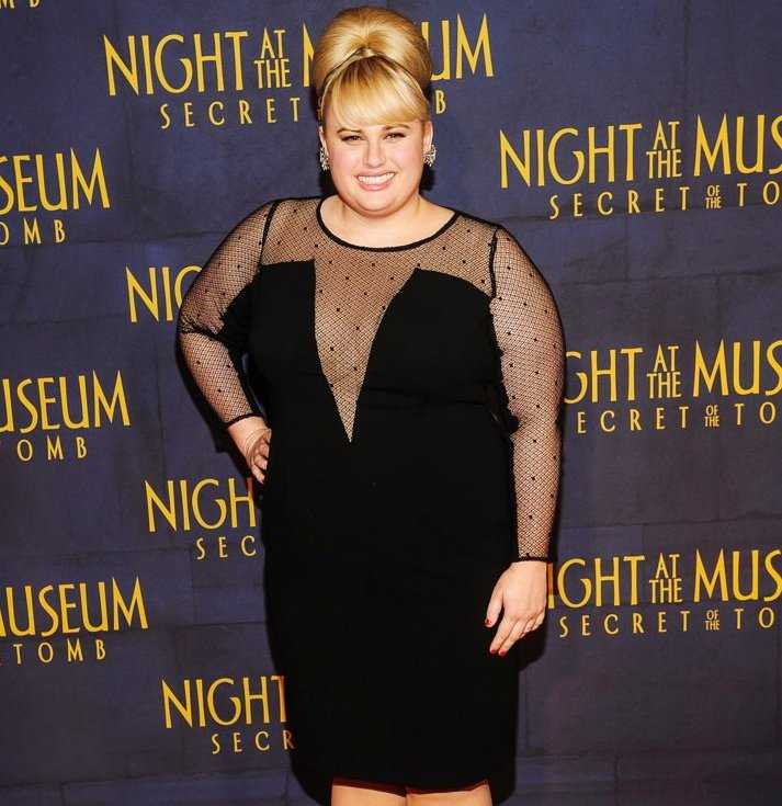 Rebel Wilson TV Shows