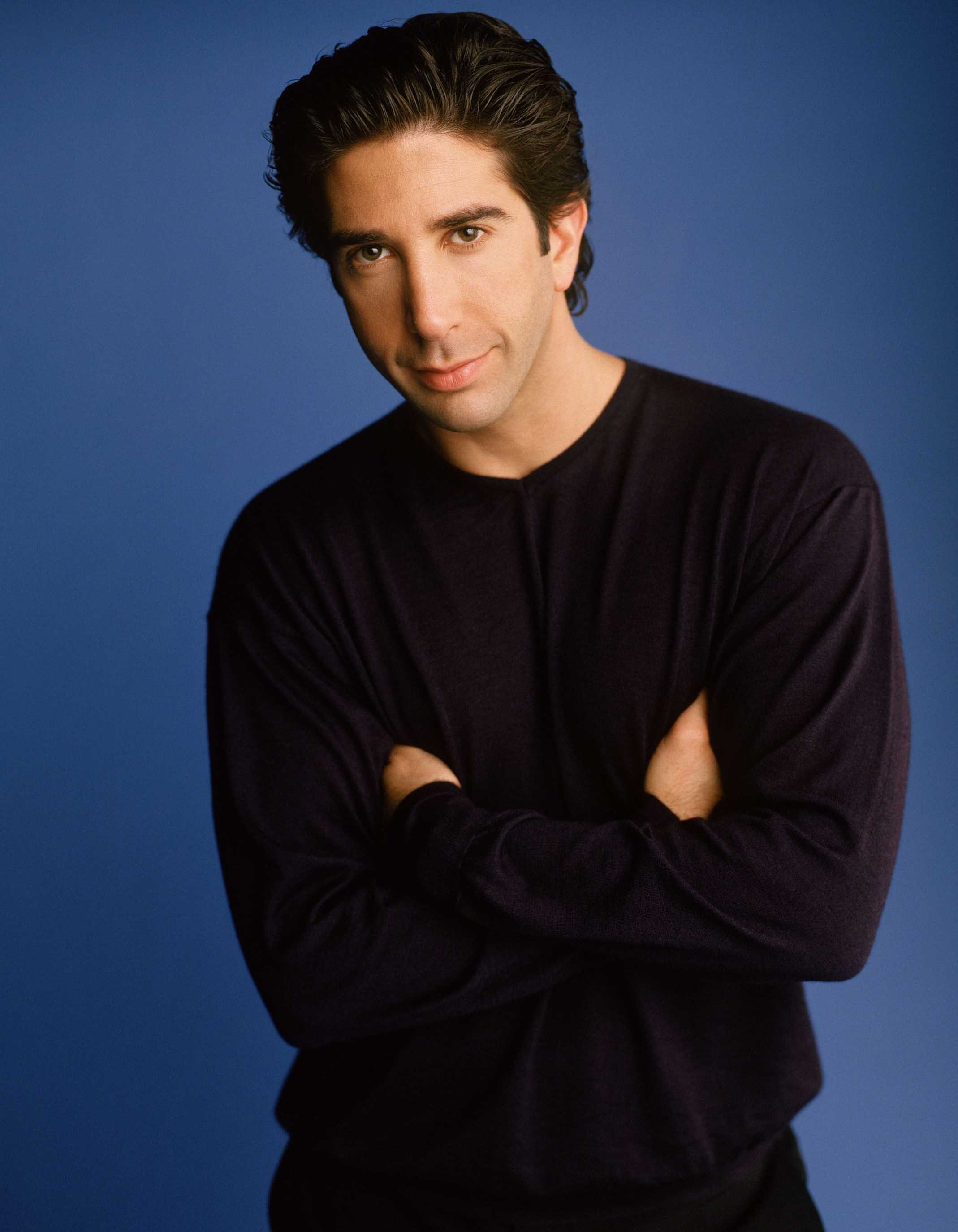 David Schwimmer Famous For