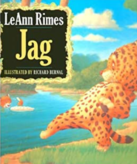 Author, LeAnn Rimes Book, 'Jag'