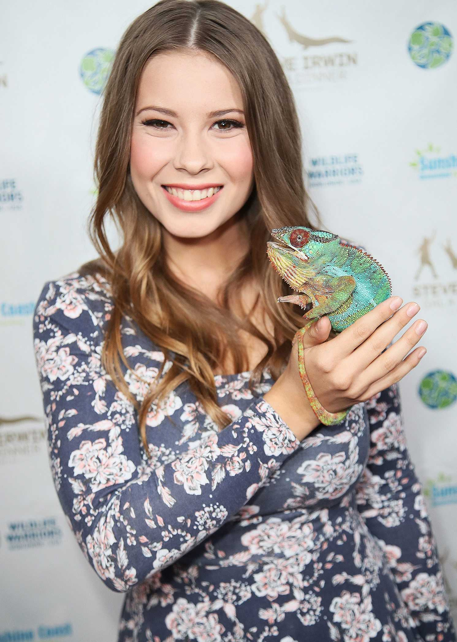 Bindi Irwin Career