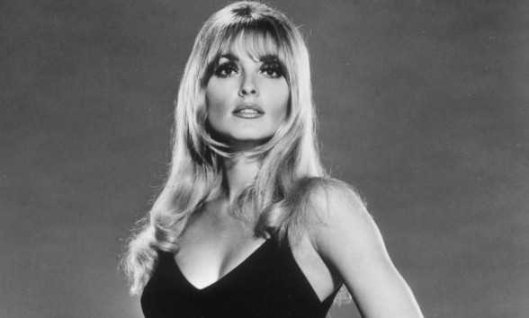 Sharon Tate Career