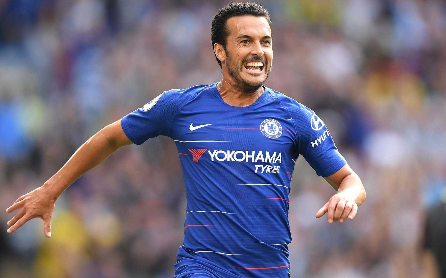 Pedro Net Worth