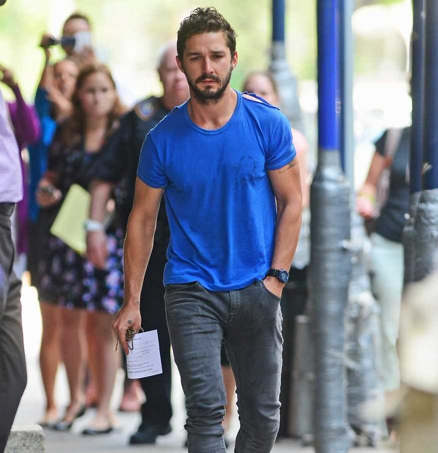 Shia LaBeouf TV Shows
