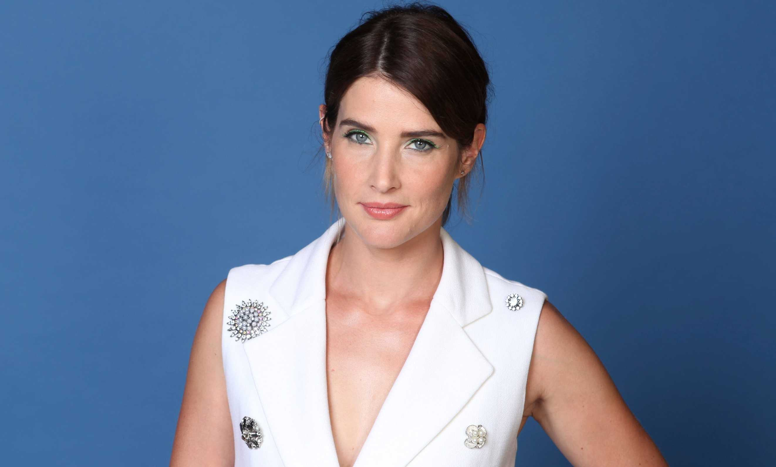 Cobie Smulders Career