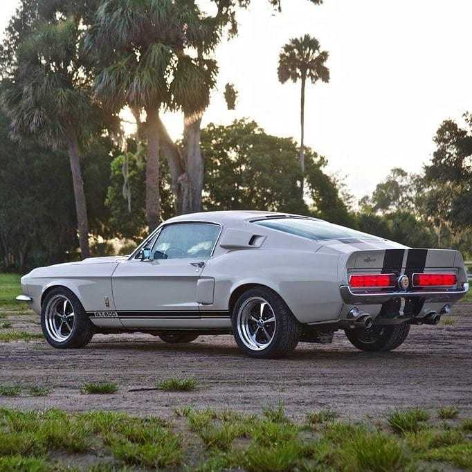 Gordon Hayward Mustang