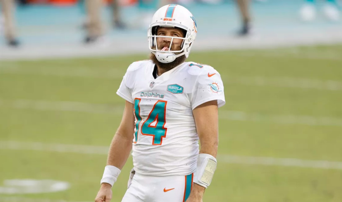 Ryan Fitzpatrick Dolphins