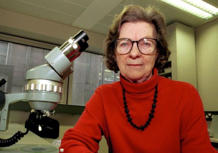 Anne McLaren IVF