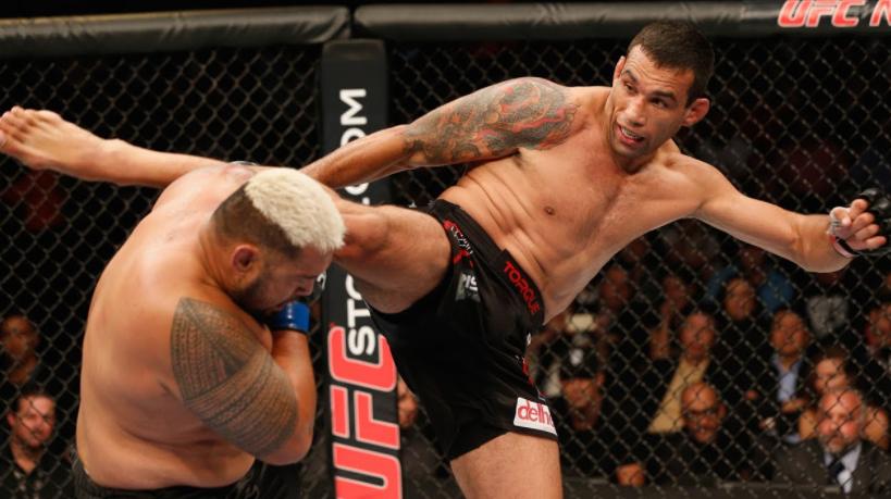 Professional MMA Fighter, Fabricio Werdum