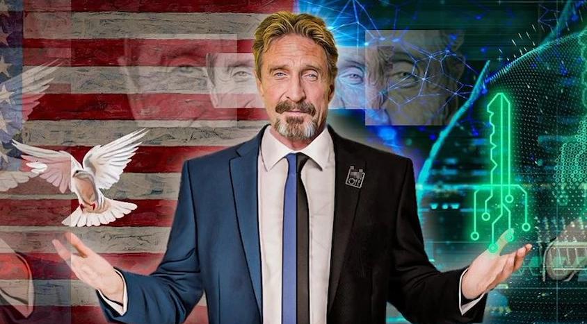 British-American Computer Programmer and Businessman